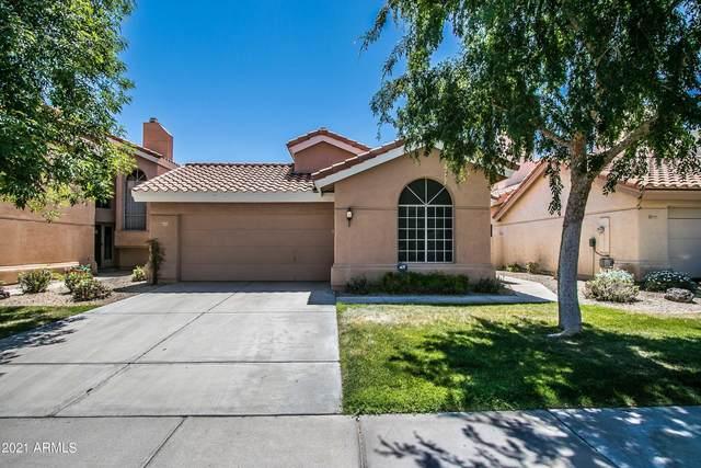 3233 E Briarwood Terrace, Phoenix, AZ 85048 (MLS #6219007) :: Yost Realty Group at RE/MAX Casa Grande