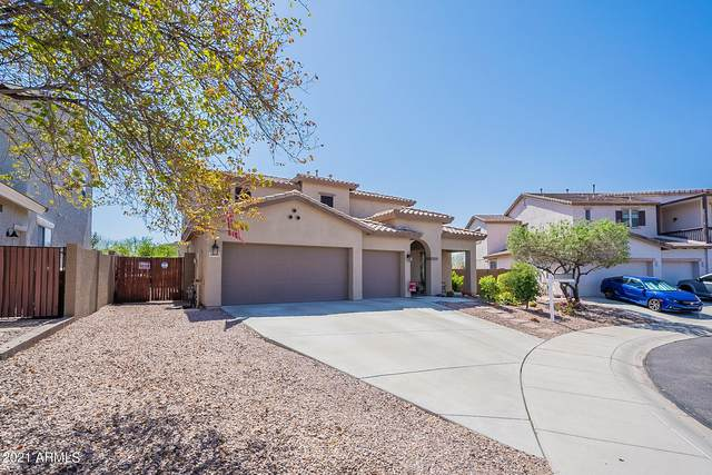 30113 N 128TH Lane, Peoria, AZ 85383 (MLS #6219013) :: Yost Realty Group at RE/MAX Casa Grande