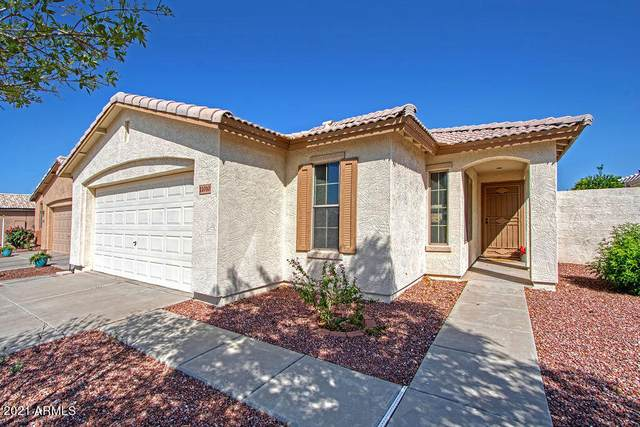 11010 W Cimarron Drive, Sun City, AZ 85373 (MLS #6219024) :: Yost Realty Group at RE/MAX Casa Grande