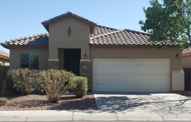 17711 W Tasha Drive, Surprise, AZ 85388 (MLS #6219064) :: Executive Realty Advisors