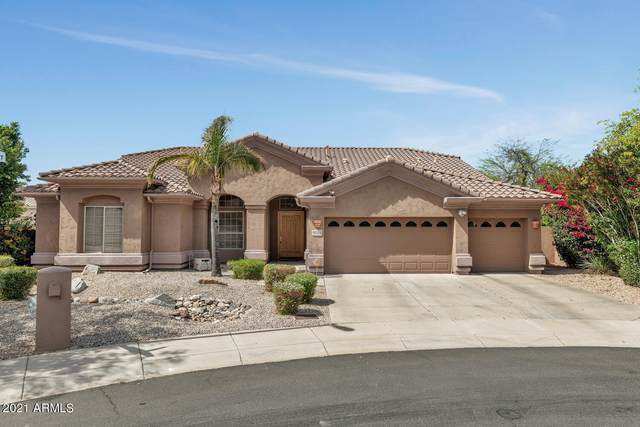 5002 E Wagoner Road, Scottsdale, AZ 85254 (MLS #6219068) :: Yost Realty Group at RE/MAX Casa Grande