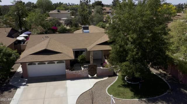 14014 N 24th Avenue, Phoenix, AZ 85023 (MLS #6219072) :: RE/MAX Desert Showcase