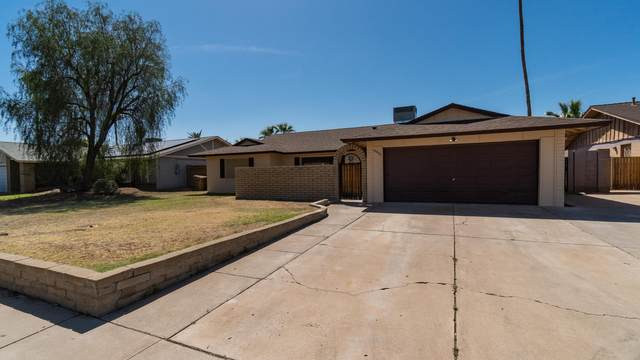 15036 N 38TH Avenue, Phoenix, AZ 85053 (MLS #6219086) :: Yost Realty Group at RE/MAX Casa Grande