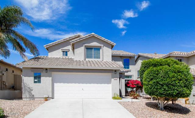 6514 W Yellow Bird Lane, Phoenix, AZ 85083 (MLS #6219102) :: Yost Realty Group at RE/MAX Casa Grande