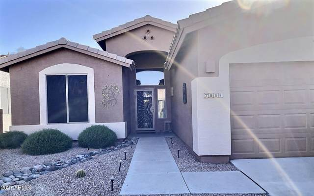 7561 E Rugged Ironwood Road, Gold Canyon, AZ 85118 (MLS #6219108) :: The Riddle Group