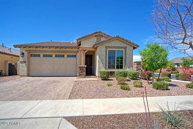 12380 N 144TH Drive, Surprise, AZ 85379 (MLS #6219131) :: Yost Realty Group at RE/MAX Casa Grande