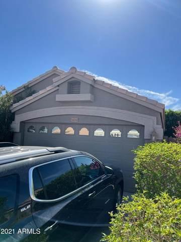 14242 S 47TH Street, Phoenix, AZ 85044 (MLS #6219170) :: Yost Realty Group at RE/MAX Casa Grande