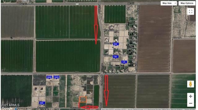 8659 S 228th Avenue, Buckeye, AZ 85326 (MLS #6219178) :: Long Realty West Valley