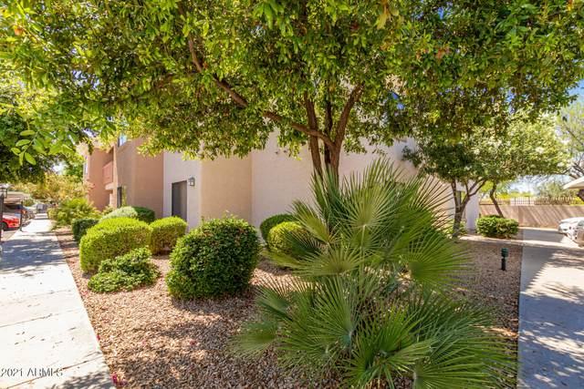 10030 W Indian School Road #246, Phoenix, AZ 85037 (MLS #6219199) :: Yost Realty Group at RE/MAX Casa Grande