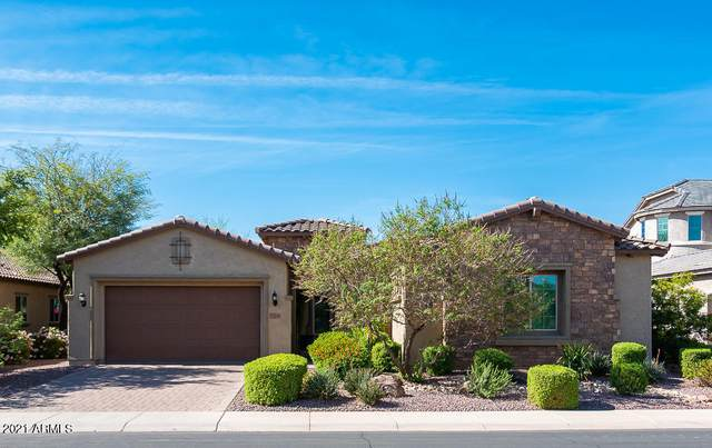 11019 E Thatcher Avenue, Mesa, AZ 85212 (MLS #6219222) :: Yost Realty Group at RE/MAX Casa Grande