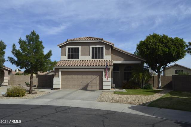 17113 N Catherine Court, Surprise, AZ 85374 (MLS #6219226) :: The Everest Team at eXp Realty