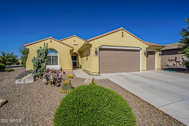27106 W Tonopah Drive, Buckeye, AZ 85396 (MLS #6219247) :: Long Realty West Valley