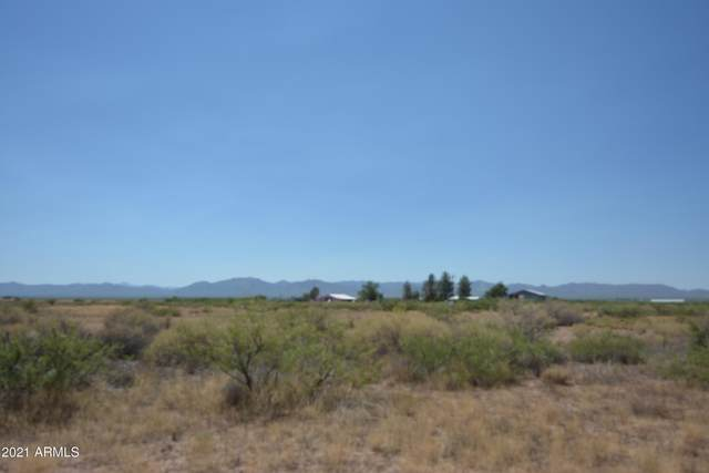 TBD Sunday Afternoon Road, McNeal, AZ 85617 (MLS #6219270) :: Yost Realty Group at RE/MAX Casa Grande