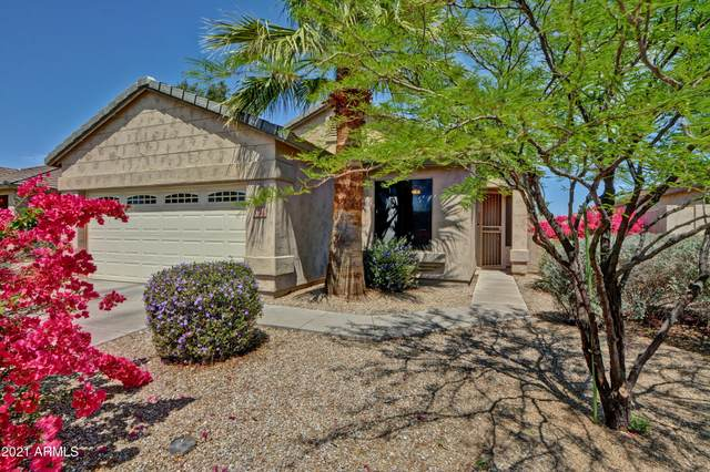 5766 W Golden Lane, Glendale, AZ 85302 (MLS #6219297) :: Yost Realty Group at RE/MAX Casa Grande