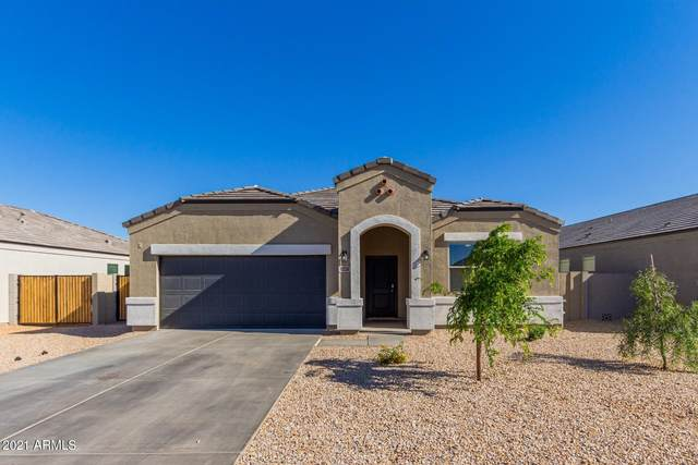 10336 E Lupine Lane, Florence, AZ 85132 (MLS #6219300) :: Yost Realty Group at RE/MAX Casa Grande