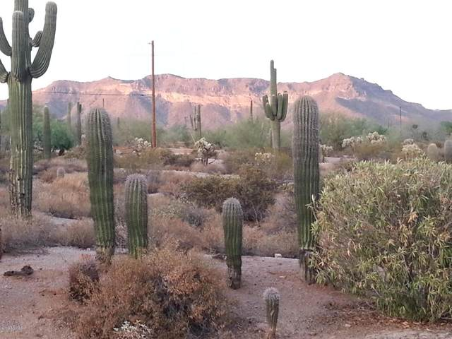 9126 E Mcdowell Road, Mesa, AZ 85207 (MLS #6219317) :: The Daniel Montez Real Estate Group