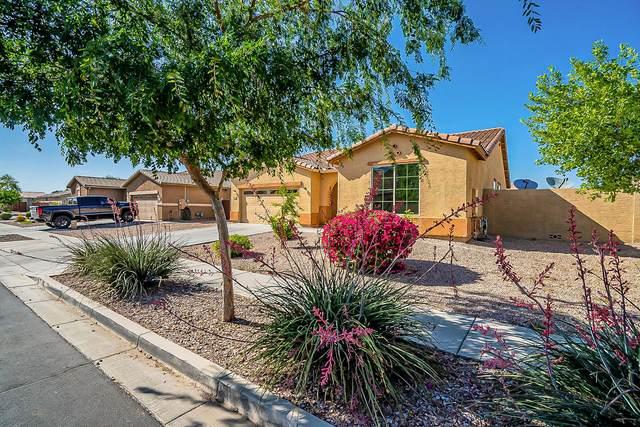7838 W Rovey Avenue, Glendale, AZ 85303 (MLS #6219381) :: Dave Fernandez Team   HomeSmart
