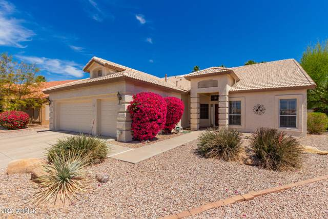 25011 S Lakestar Drive, Sun Lakes, AZ 85248 (MLS #6219383) :: Dijkstra & Co.