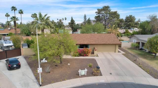 1816 W Seldon Lane, Phoenix, AZ 85021 (MLS #6219417) :: Long Realty West Valley