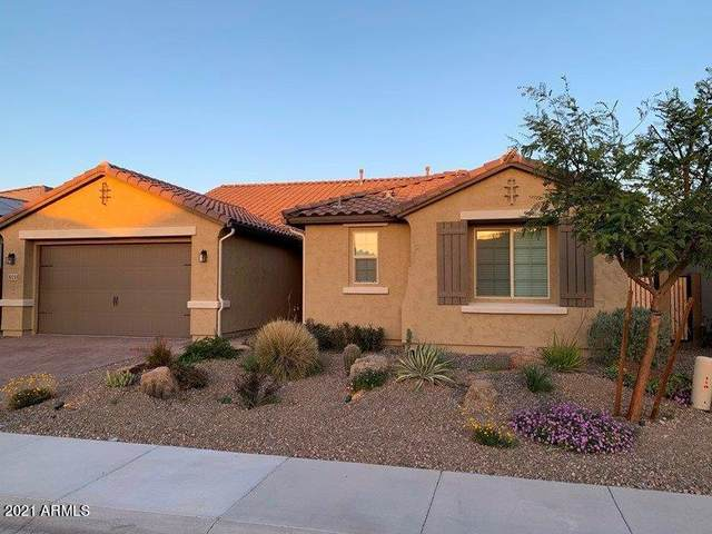 30255 N 115TH Drive, Peoria, AZ 85383 (MLS #6219421) :: The Property Partners at eXp Realty