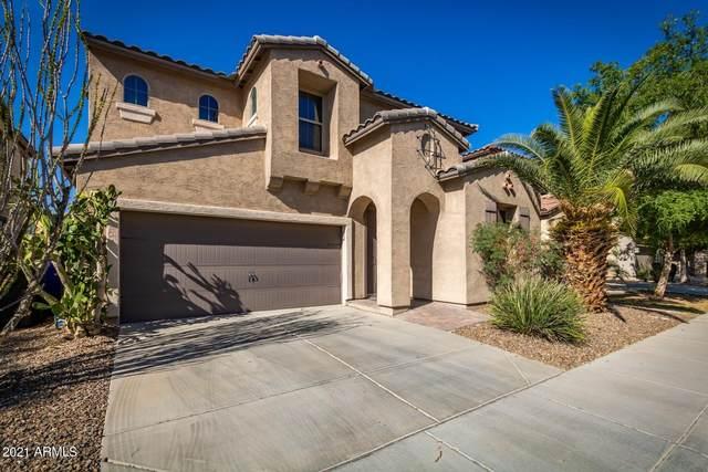 3278 E Morning Star Lane, Gilbert, AZ 85298 (MLS #6219473) :: Klaus Team Real Estate Solutions
