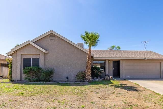 2239 W Irma Lane, Phoenix, AZ 85027 (MLS #6219497) :: Yost Realty Group at RE/MAX Casa Grande