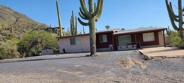 6015 E Cholla Road, Cave Creek, AZ 85331 (MLS #6219499) :: The Daniel Montez Real Estate Group