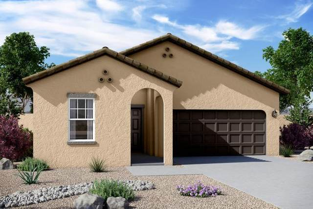 19557 W Annika Drive, Litchfield Park, AZ 85340 (MLS #6219548) :: Kepple Real Estate Group