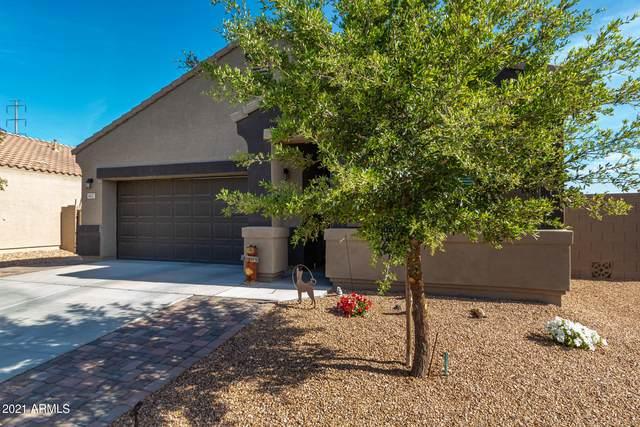 41057 W Somers Drive, Maricopa, AZ 85138 (MLS #6219577) :: The Daniel Montez Real Estate Group