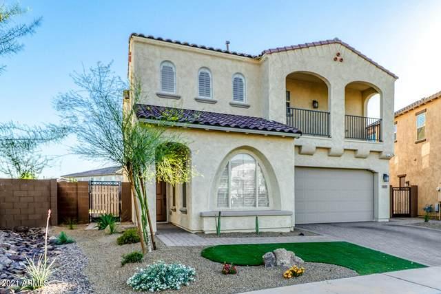 3257 E Louise Drive, Phoenix, AZ 85050 (MLS #6219599) :: Yost Realty Group at RE/MAX Casa Grande