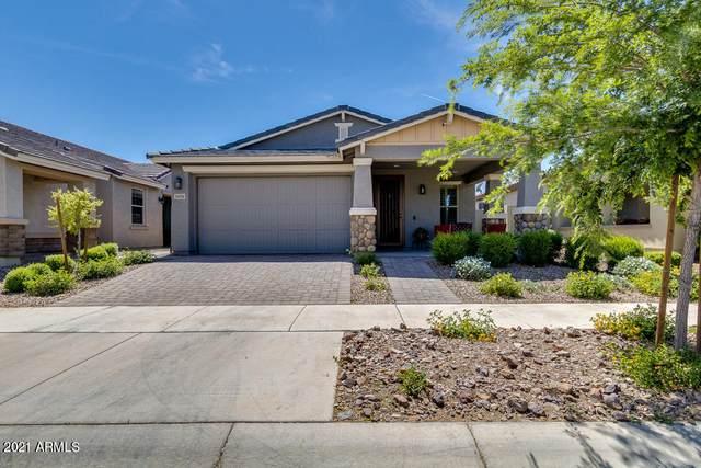 5656 S Colt, Mesa, AZ 85212 (MLS #6219644) :: Yost Realty Group at RE/MAX Casa Grande