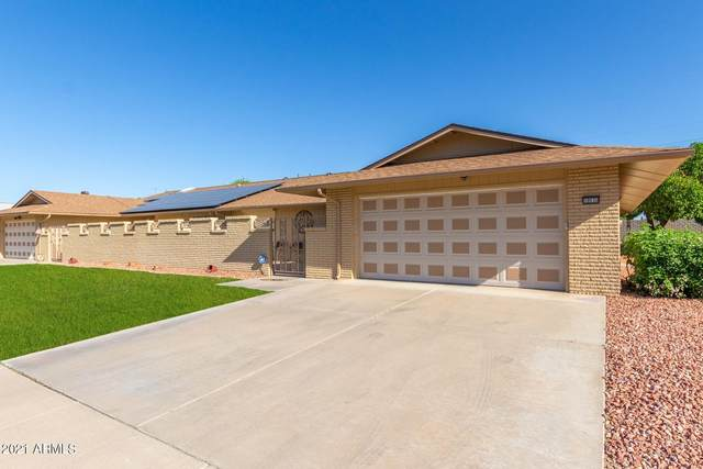 10530 W Campana Drive, Sun City, AZ 85351 (MLS #6219647) :: The Garcia Group