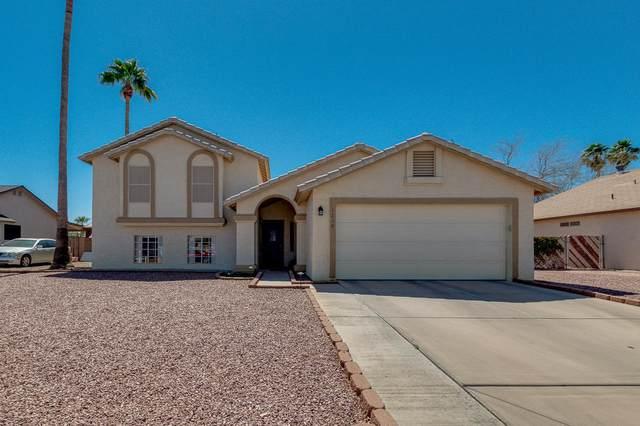 1219 E Avenida Isabela, Casa Grande, AZ 85122 (MLS #6219654) :: Long Realty West Valley