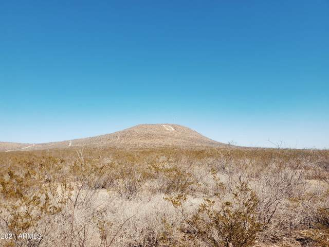 410-01-023 N Rodger's Ranch, Douglas, AZ 85067 (MLS #6219669) :: Howe Realty