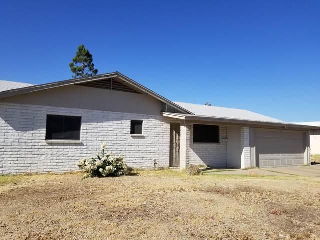2316 W Larkspur Drive, Phoenix, AZ 85029 (MLS #6219695) :: Yost Realty Group at RE/MAX Casa Grande