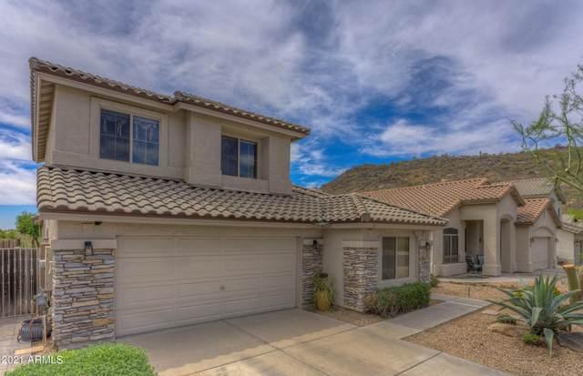 2017 E Creedance Boulevard, Phoenix, AZ 85024 (MLS #6219709) :: Yost Realty Group at RE/MAX Casa Grande