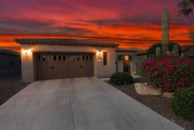 12984 W Plum Road, Peoria, AZ 85383 (MLS #6219731) :: West Desert Group | HomeSmart