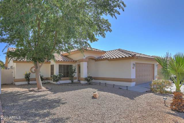 1411 W Canary Way, Chandler, AZ 85286 (MLS #6219756) :: Executive Realty Advisors