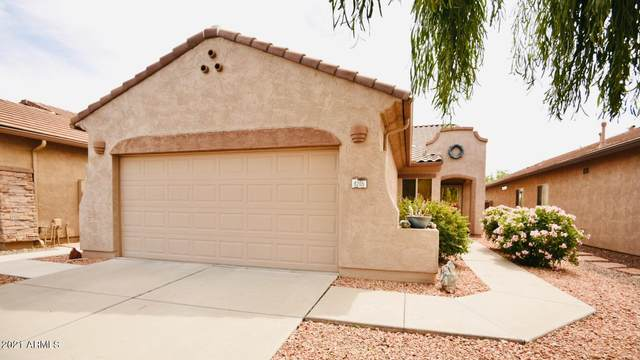 8205 S Pioneer Court, Gold Canyon, AZ 85118 (MLS #6219766) :: Dave Fernandez Team | HomeSmart