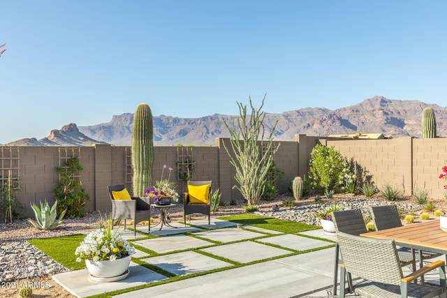 11996 E Chevelon Trail, Gold Canyon, AZ 85118 (MLS #6219767) :: Dave Fernandez Team | HomeSmart