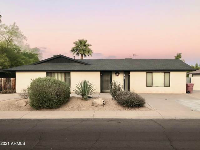 3925 N 86TH Street, Scottsdale, AZ 85251 (MLS #6219779) :: Yost Realty Group at RE/MAX Casa Grande