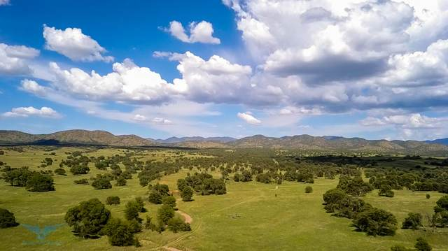 TBD Forest Road 4745, Patagonia, AZ 85624 (MLS #6219806) :: Arizona Home Group