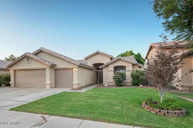 1182 W Honeysuckle Lane, Chandler, AZ 85248 (MLS #6219812) :: Executive Realty Advisors