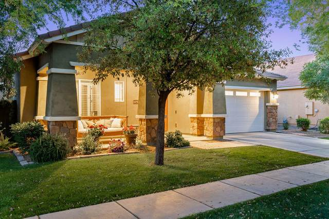 3452 E Comstock Drive, Gilbert, AZ 85296 (MLS #6219813) :: The Dobbins Team