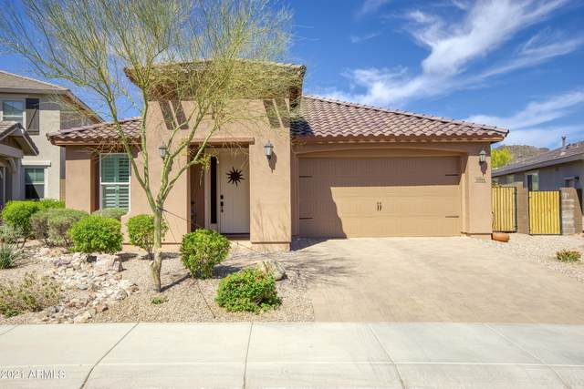 32006 N 132ND Drive, Peoria, AZ 85383 (MLS #6219816) :: Executive Realty Advisors