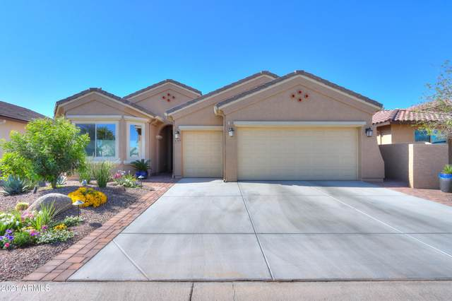 4349 W Box Canyon Drive, Eloy, AZ 85131 (MLS #6219854) :: The Everest Team at eXp Realty