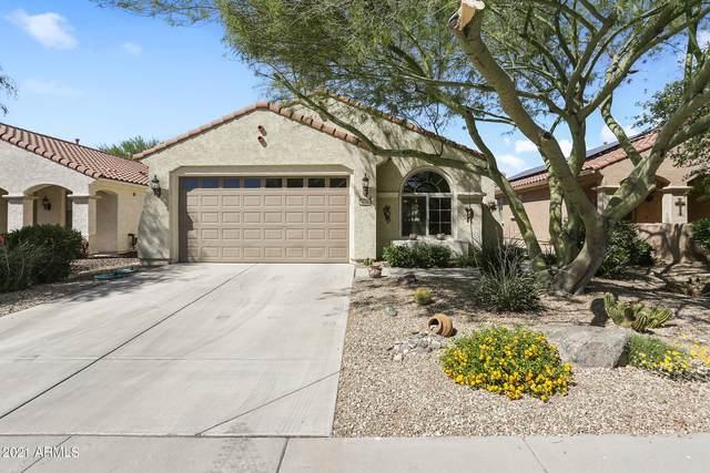 26346 W Potter Drive, Buckeye, AZ 85396 (MLS #6219873) :: Executive Realty Advisors