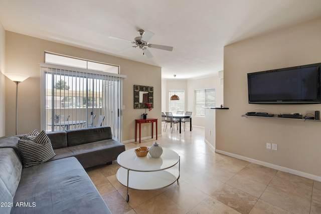 5335 E Shea Boulevard #1023, Scottsdale, AZ 85254 (MLS #6219916) :: Yost Realty Group at RE/MAX Casa Grande