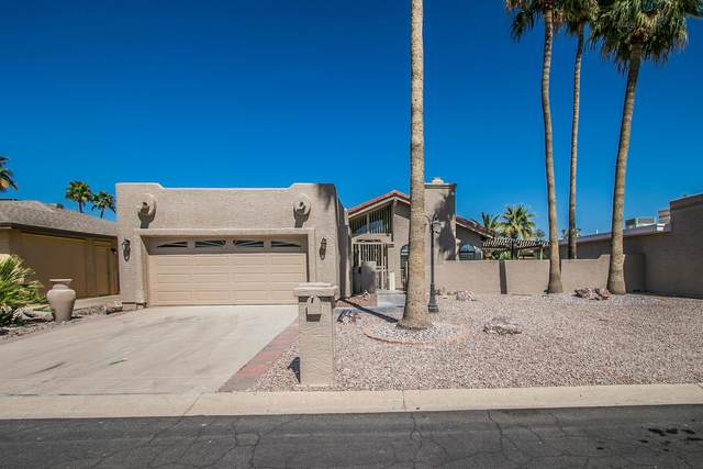 25821 S Hollygreen Drive, Sun Lakes, AZ 85248 (MLS #6219946) :: The Dobbins Team