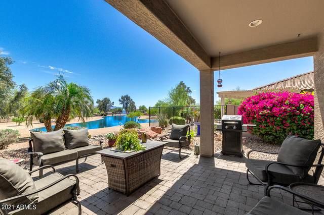 15563 W Roanoke Avenue, Goodyear, AZ 85395 (MLS #6219954) :: Keller Williams Realty Phoenix